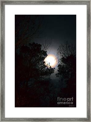 Valley Of The Moon Framed Print by Maria Urso