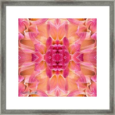 Valley Porcupine Abstract Framed Print by J McCombie
