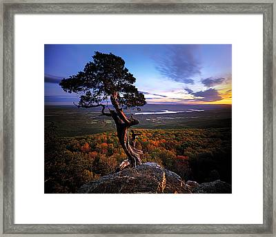 Valley Sentinel Framed Print by Ed Cooley