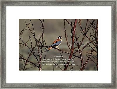 Value Framed Print by Lynn Hopwood
