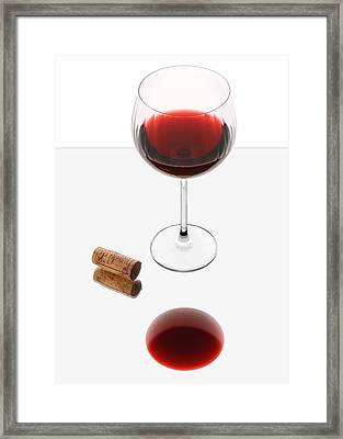 Vampire Wine Glass Framed Print by Dennis James