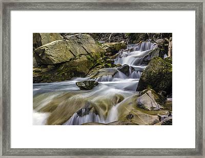 Van Trump Creek Mount Rainier National Park Framed Print by Bob Noble Photography
