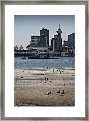 Vancouver Harbor By Stanley Park At Low Tide Framed Print