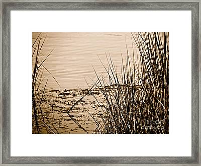 Vanishing  Framed Print by Q's House of Art ArtandFinePhotography
