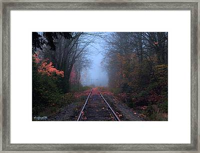 Vanishing Autumn Framed Print by Sarai Rachel