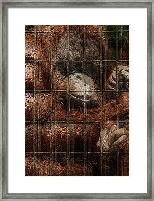 Vanishing Cage Framed Print