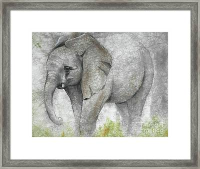 Vanishing Thunder Series-baby Elephant I Framed Print