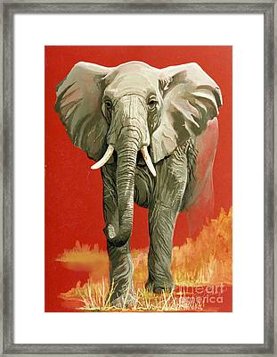 Vanishing Thunder Series Framed Print