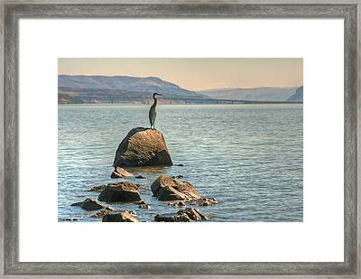Vantage Point Framed Print by Jeff Cook