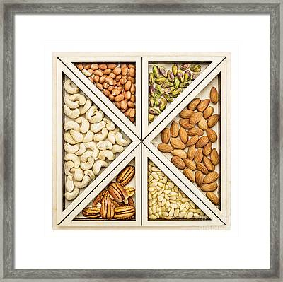 Variety Of Nuts Abstract Framed Print by Marek Uliasz
