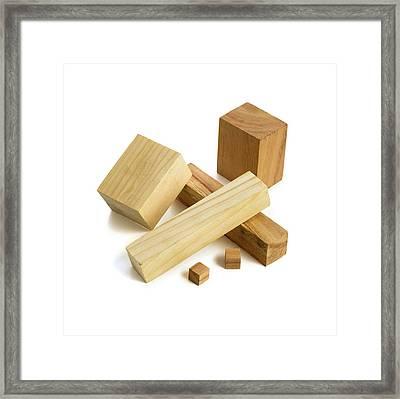Variety Of Wooden Blocks Framed Print