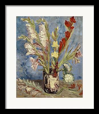 Still-life With Gladiolus Framed Prints