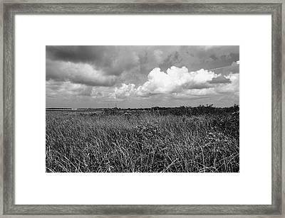 Vast Landscape Framed Print by Andres LaBrada