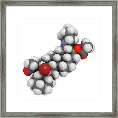 Vecuronium Bromide Muscle Relaxant Framed Print by Molekuul