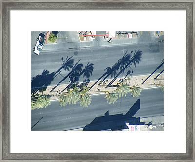 Veepalm Framed Print
