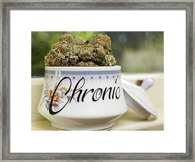Veganically Grown Medical Cannabis Framed Print by Stock Pot Images