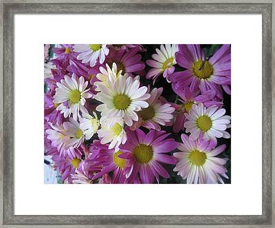 Framed Print featuring the photograph Vegas Butterfly Garden Flowers Colorful Romantic Interior Decorations by Navin Joshi