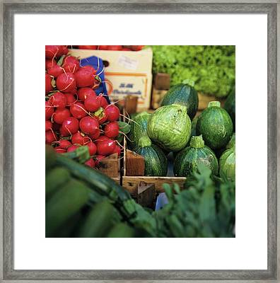 Vegetable Market: Zucchini And Red Radishes Framed Print