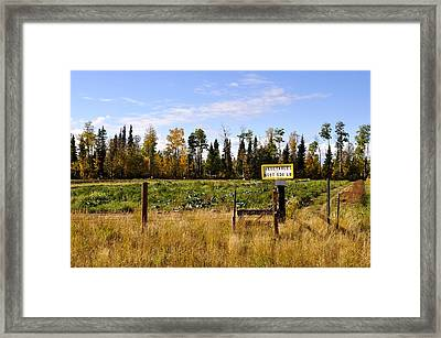 Framed Print featuring the photograph Vegetables For Sale by Cathy Mahnke