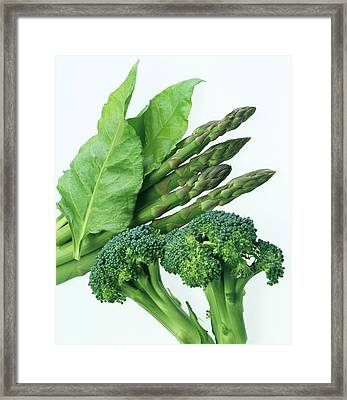 Vegetables Framed Print by Sheila Terry/science Photo Library