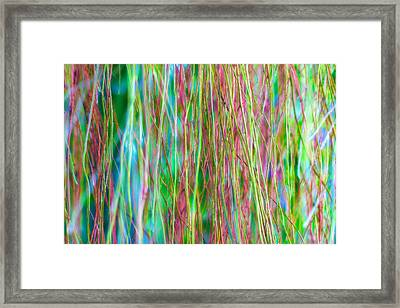 Veil Of Colors Framed Print by Jade Moon