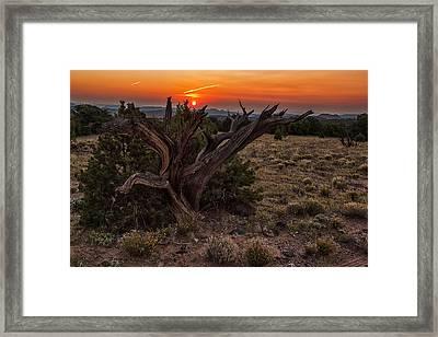 Veiled Sunrise Framed Print by Jennifer Grover