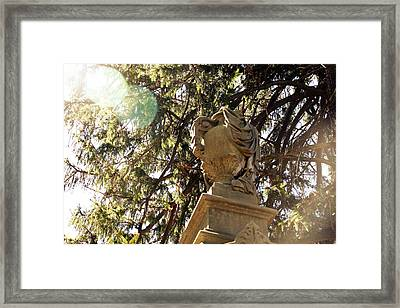 Veiled Urn Framed Print