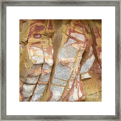 Veined Rock Framed Print by Barbie Corbett-Newmin