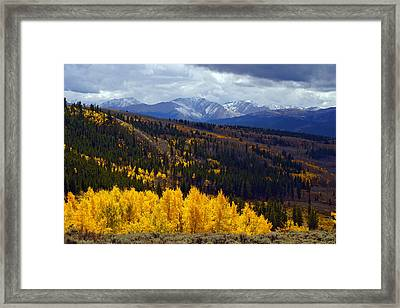Veins Of Gold Framed Print by Jeremy Rhoades