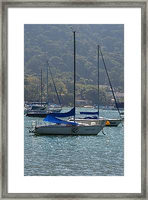Velas Framed Print by Marcos R Fernandes
