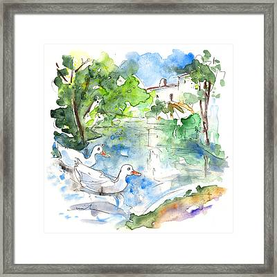 Velez Blanco Ducks Framed Print