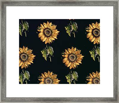 Velours Au Sabre Silk Decoration Of Sunflowers By Maison Ogier And Duplan, Lyon 1894 Textile Framed Print