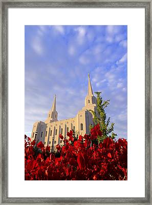 Velvet Framed Print by Chad Dutson