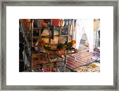 Vendors - Night Street Market - Chiang Mai Thailand - 011337 Framed Print