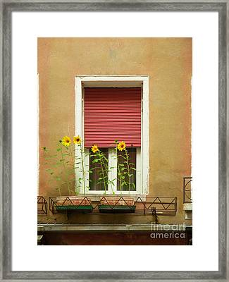 Venice Italy Yellow Flowers Red Shutter Framed Print