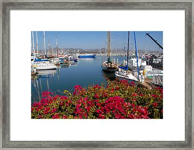 Ventura Harbor Framed Print