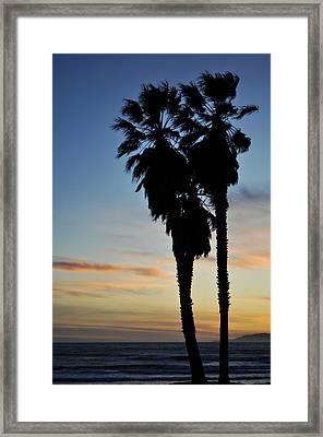 Ventura Palm Sunset Framed Print