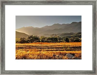 Ventura River Preserve Framed Print