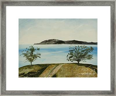 Ventura's Two Trees With Santa Cruz  Framed Print