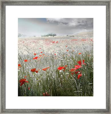 Framed Print featuring the photograph Verano Tardio by Alfonso Garcia