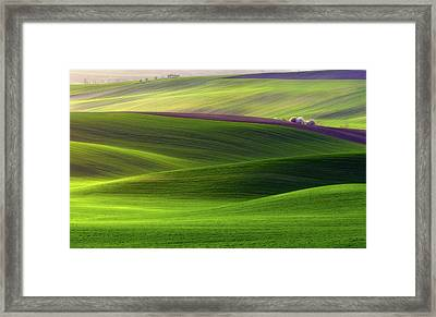 Verdant Land Framed Print