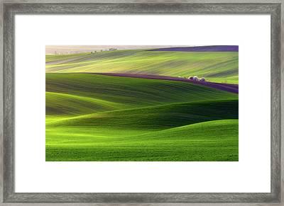 Verdant Land Framed Print