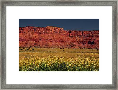 Vermillion Cliffs And Field Of Yellow Framed Print by Michel Hersen