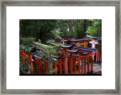 Framed Print featuring the photograph Vermillion Torii Gates by Debra Crank