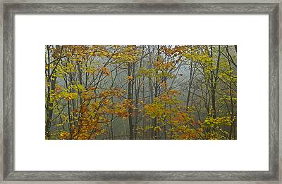 Vermont Autumn Trees Fog Mount Mansfield Panorama Framed Print by Andy Gimino