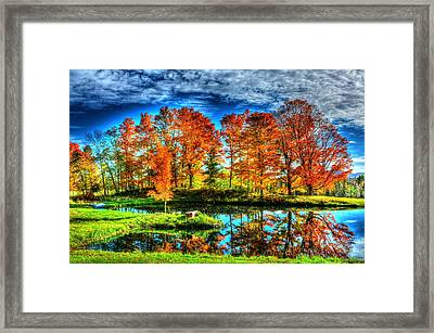 Vermont Colors Framed Print