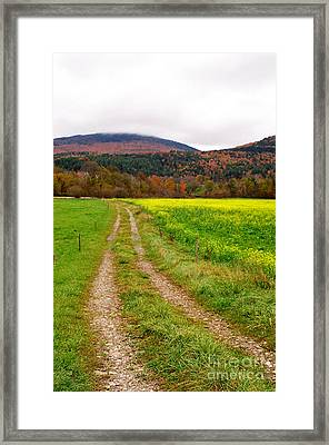 Vermont Farmer's Track Framed Print by Vinnie Oakes