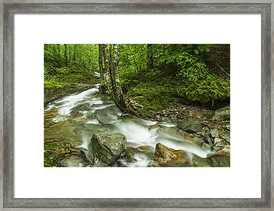 Vermont Forest River Waterfall Mount Mansfield Framed Print