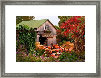 Framed Print featuring the photograph Vermont Pumpkins And Autumn Flowers by Jeff Folger