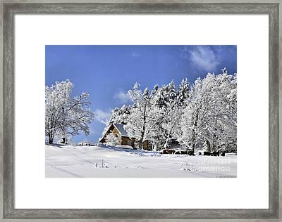 Vermont Winter Beauty Framed Print